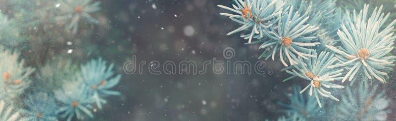 Schneefall in Winterwaldweihnachtsnatur-Magiefahne stockfotografie
