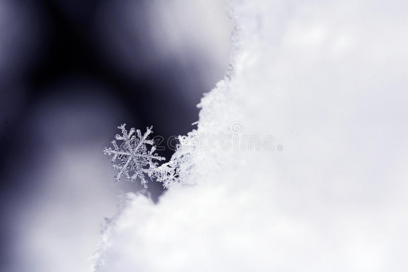 Schneeflocke lizenzfreie stockfotografie