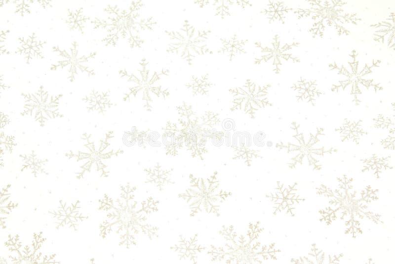 Schneeflocke-Hintergrund lizenzfreie stockfotos