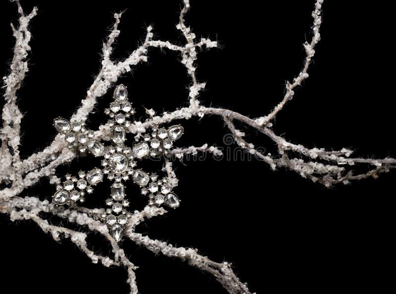 Schneeflocke im Zweig lizenzfreie stockfotos