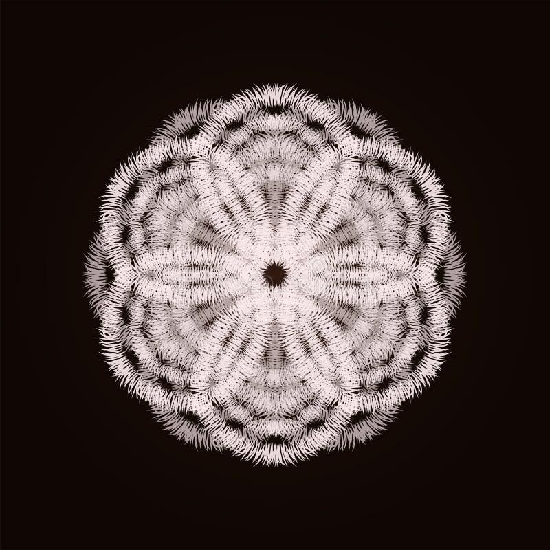 Download Schneeflockenblumenkarte vektor abbildung. Illustration von hintergrund - 96931539