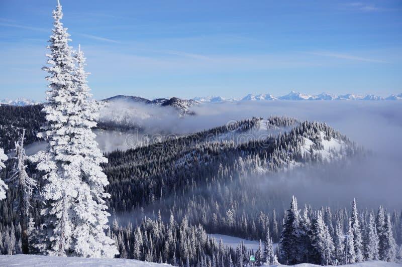 Schneegeist, der Wolke-bedecktes Tal übersehen und Spitzen, die über es am Maränen-Erholungsort spähen lizenzfreies stockfoto