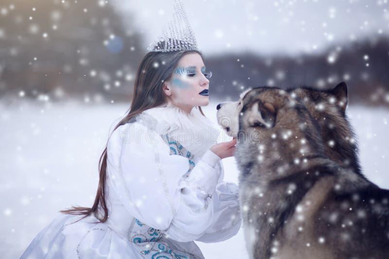 Schneekönigin im Winter Märchenmädchen mit Malamute lizenzfreie stockfotografie