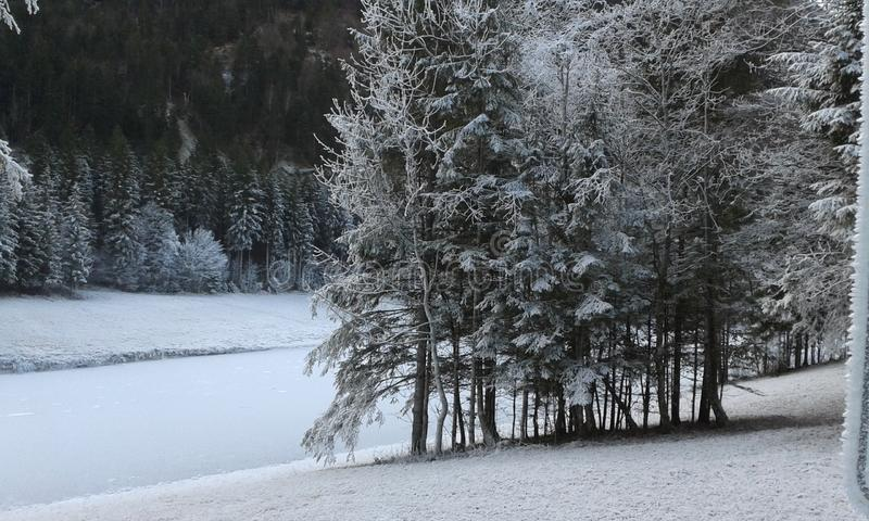 Schneelandschaft am Silvenstein стоковое фото rf