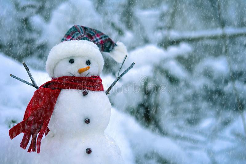 Schneemann auf dem Hintergrund einer Winterlandschaft stockbild