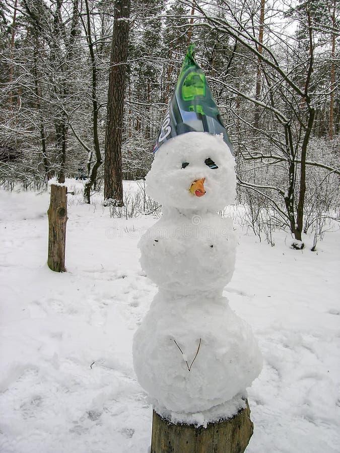 Schneemann in einem schneebedeckten Wald stockbild