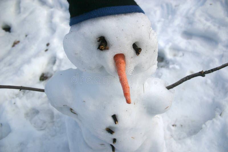 Schneemann mit Karottewekzeugspritze und Toque lizenzfreies stockbild