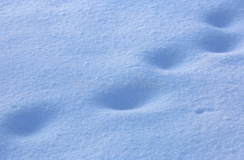 Schneeoberfläche mit Abdrücken stockfotografie