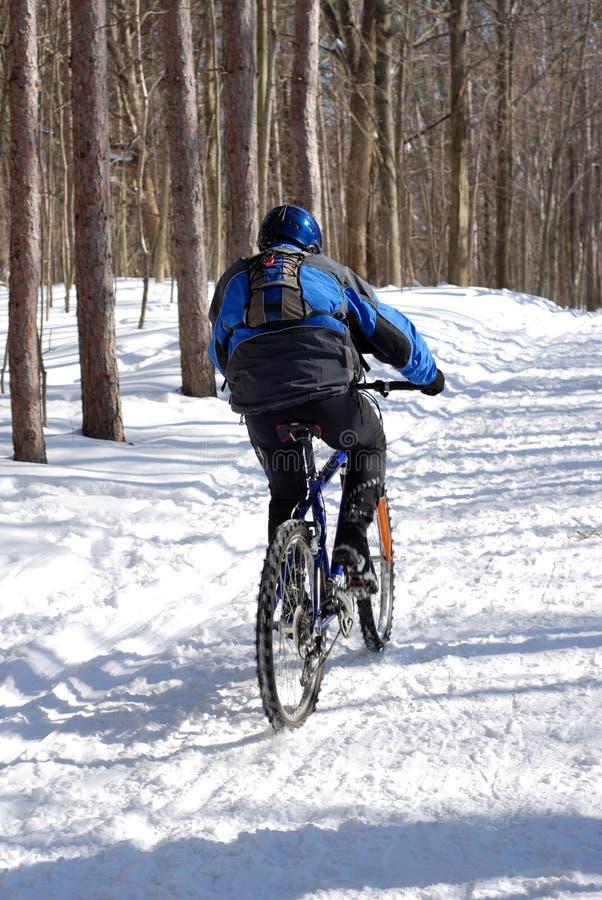 Schneeradfahrer lizenzfreies stockbild