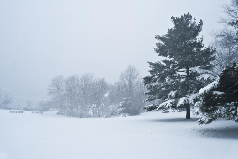 Schneesturm-Dunst lizenzfreie stockbilder