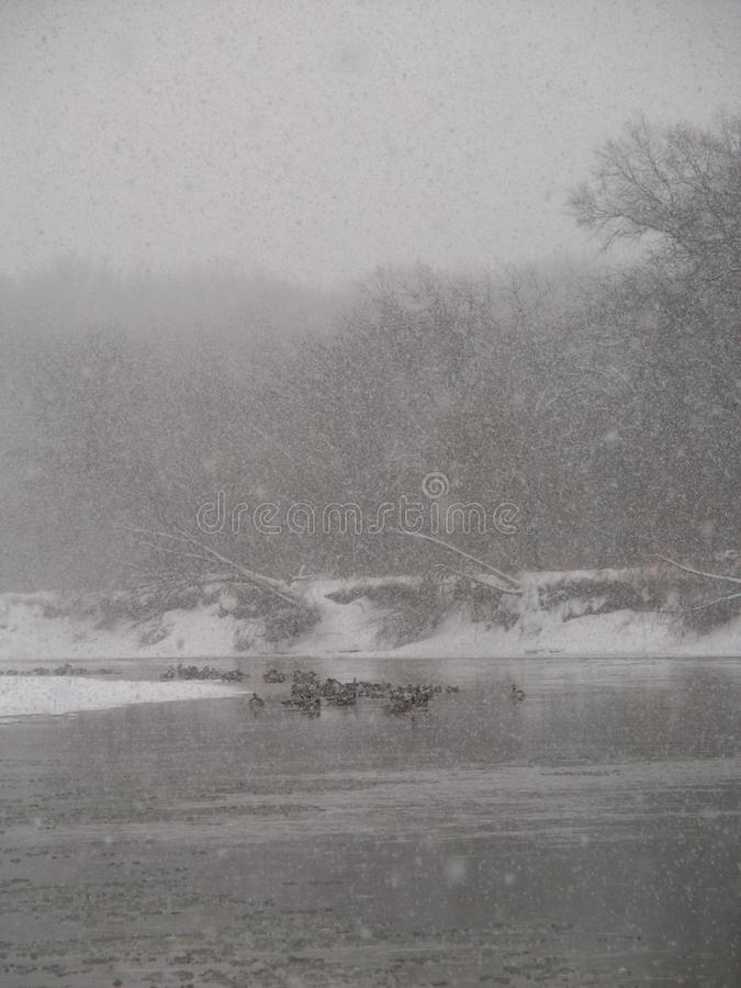 Schneesturm Kishwaukee-Fluss lizenzfreies stockbild