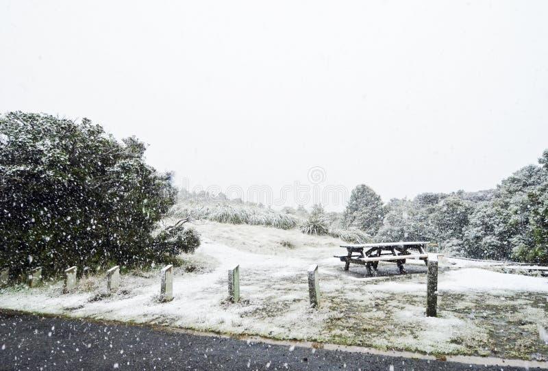 Schneesturmbedeckungspicknick-Banktabelle im Park lizenzfreie stockfotos