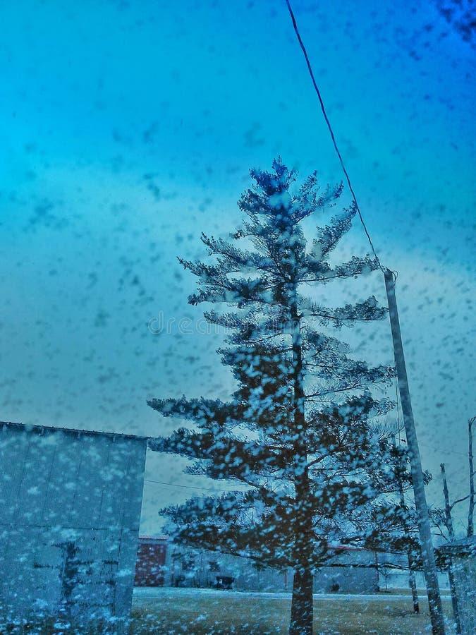 Schneetag stockfoto