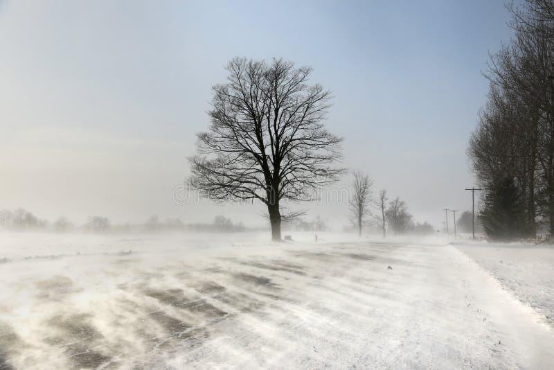 Schneeverwehungen über der Straße Vertikales Foto lizenzfreie stockfotografie