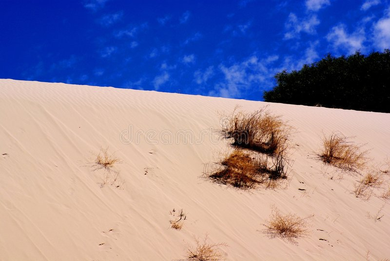 Schneewehe-Sanddüne stockbilder