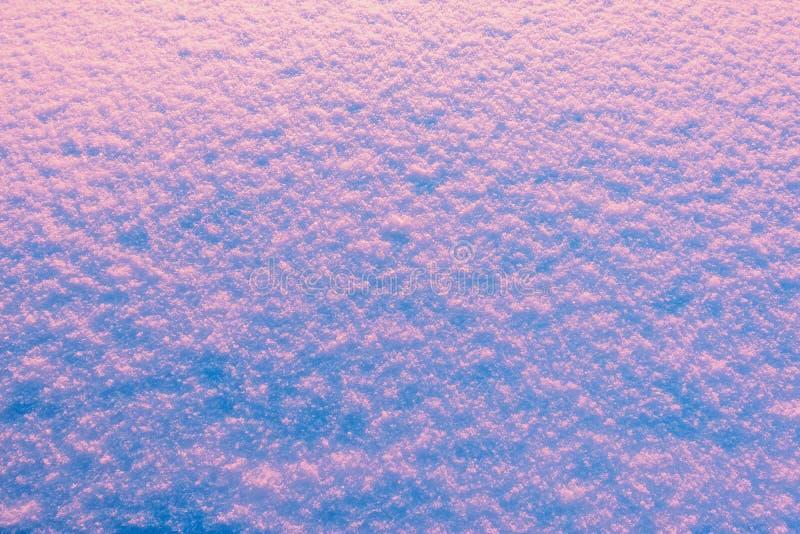 Schneewehenoberfläche am Morgen lizenzfreie stockfotos
