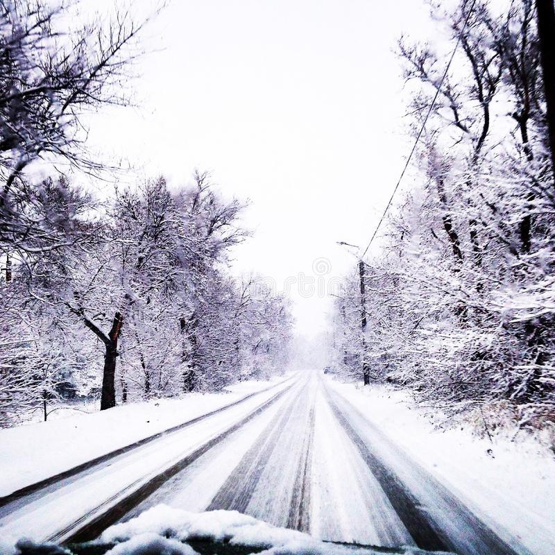 Schneewetterbaumeis weißer whiteandblack Winter lizenzfreies stockfoto