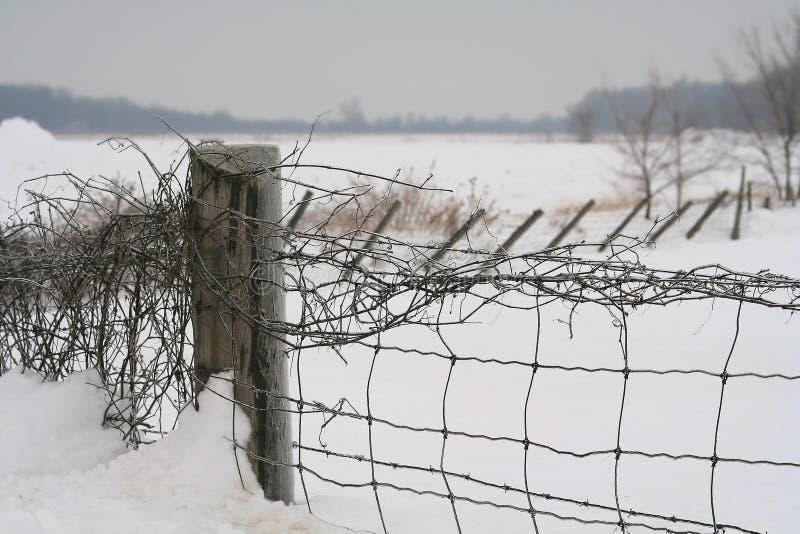 Schneezaun lizenzfreie stockfotos