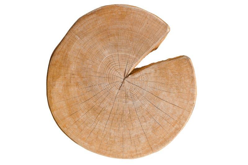 Schneiden Sie das Protokoll, das Baumringe und -sprünge zeigt lizenzfreies stockbild