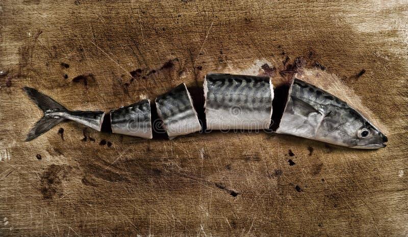 Schneiden Sie Fische stockfoto