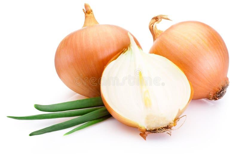 Schneiden Sie frische Birnen der Zwiebel auf weißem Hintergrund lizenzfreies stockbild
