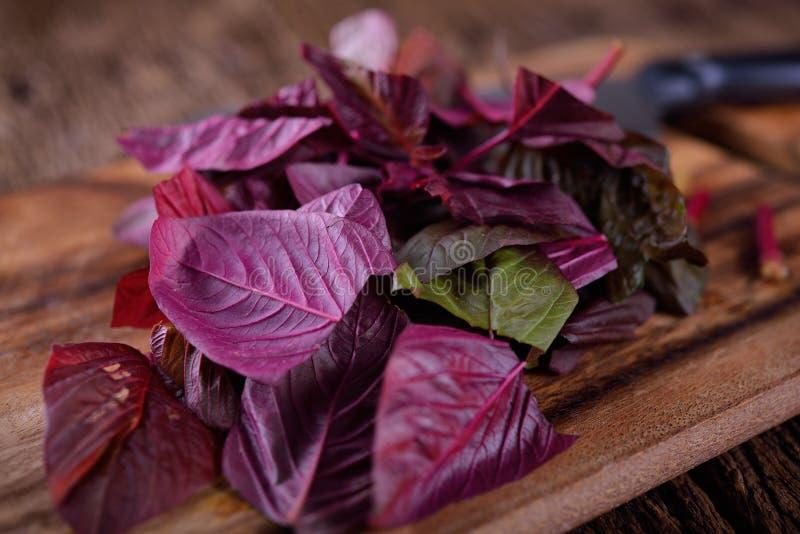 Schneiden Sie frischen Spinat auf hölzernem Brett stockfotos