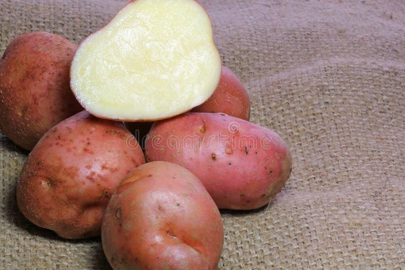 Schneiden Sie rote Kartoffeln auf Leinwand. stockbilder