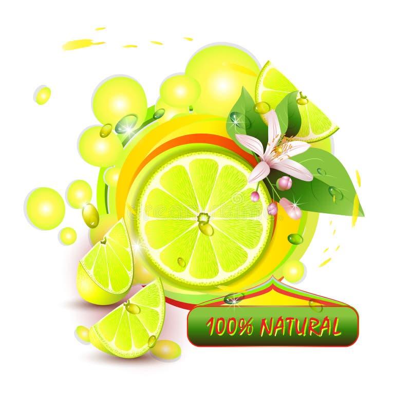 Download Schneidet Zitrone Mit Blumen Vektor Abbildung - Illustration von lemony, zitrusfrucht: 26371127
