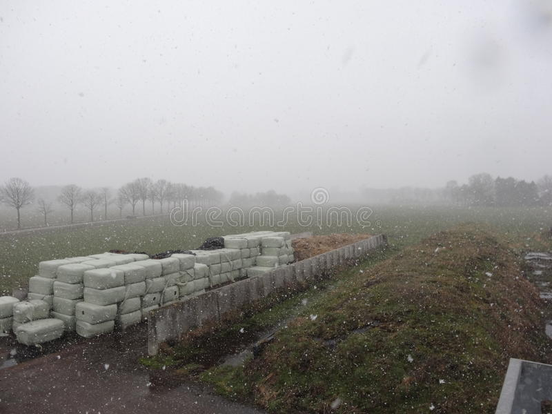 Schneien auf dem Bauernhof lizenzfreie stockfotografie