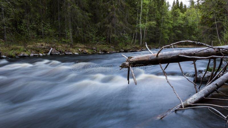 Schnell fließender Fluss stockfotografie