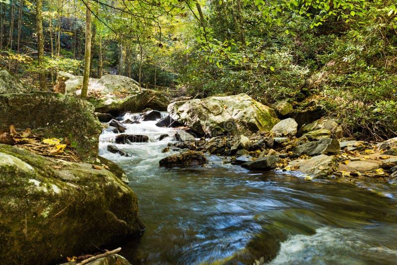 Schnell fließender Strom in den Bergen des North Carolina lizenzfreie stockbilder
