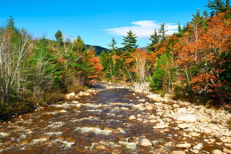 Schneller Fluss am Herbst stockfotos