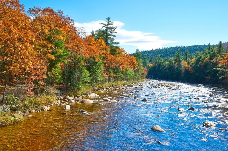 Schneller Fluss am Herbst stockbilder