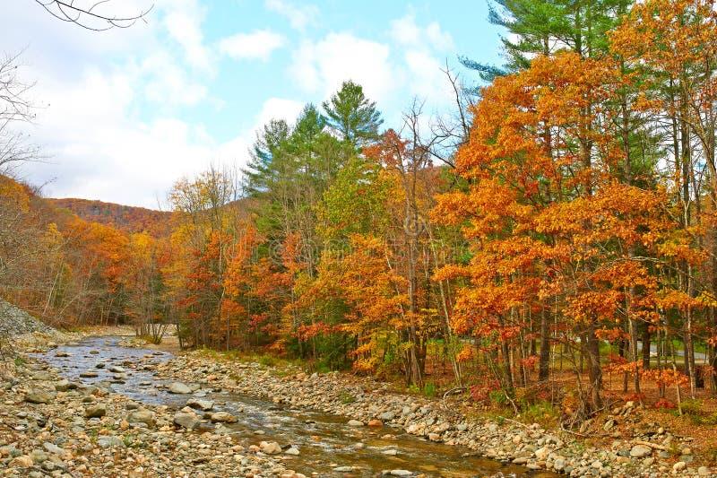 Schneller Fluss am Herbst lizenzfreie stockfotografie