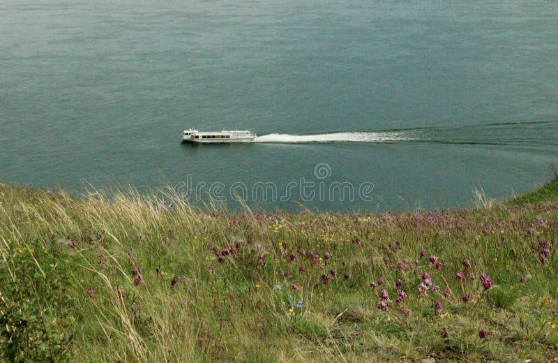 Schnelles Motorschiff, das entlang dem sibirischen Fluss hetzt stockbild