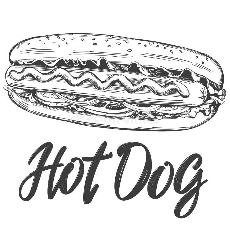 Schnellimbiß des Hotdogs, Hand gezeichnete realistische Skizze der Vektorillustration, Retrostil lizenzfreie abbildung