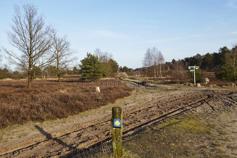 Schneverdingen Alemania - rastro y muestras en el brezo de Luneburg fotos de archivo