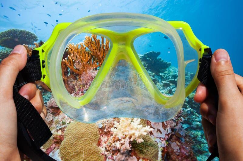 Schnorcheln der Maske mit Unterwasserbild des korallenroten Hintergrundes lizenzfreie stockfotos