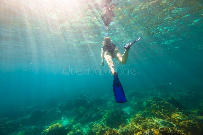 Schnorcheln im Korallenriff stockfotografie