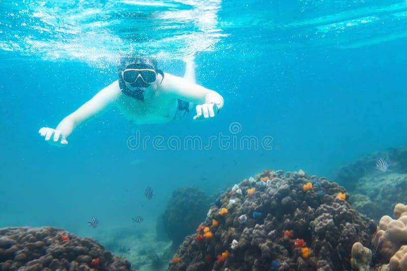 Schnorcheln von Unterwasser-, aktiven Reisen, snorkeler von aufpassenden Korallen, von Schwimmen und von Tauchen stockfoto
