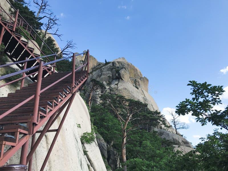 Schodki w górę i piękne góry Seoraksan park narodowy 30 target1781_1_ strażników Lipiec królewiątka Korea kumpel s Seoul południe zdjęcia stock