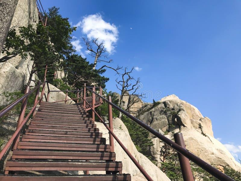 Schodki w górę i piękne góry Seoraksan park narodowy 30 target1781_1_ strażników Lipiec królewiątka Korea kumpel s Seoul południe zdjęcia royalty free