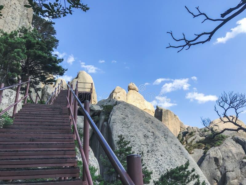 Schodki w górę i piękne góry Seoraksan park narodowy 30 target1781_1_ strażników Lipiec królewiątka Korea kumpel s Seoul południe obrazy royalty free