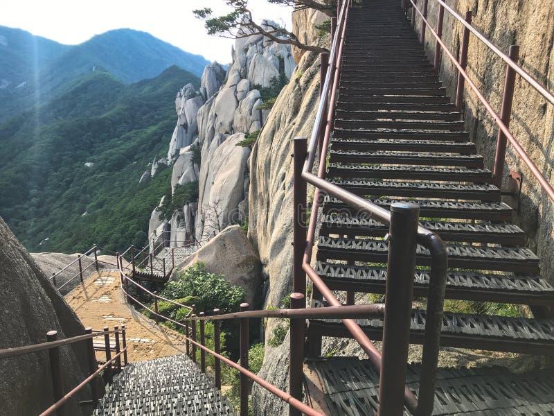Schodki w górę i piękne góry Seoraksan park narodowy 30 target1781_1_ strażników Lipiec królewiątka Korea kumpel s Seoul południe fotografia royalty free