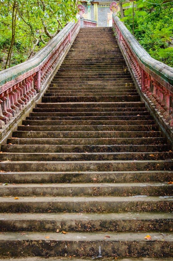 Schody iść do buddyjskiej świątyni w dżungla lesie obraz stock