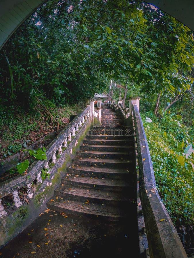Schody Na Wodospad Kathu W Pięknym Lasie Deszczowym obraz royalty free