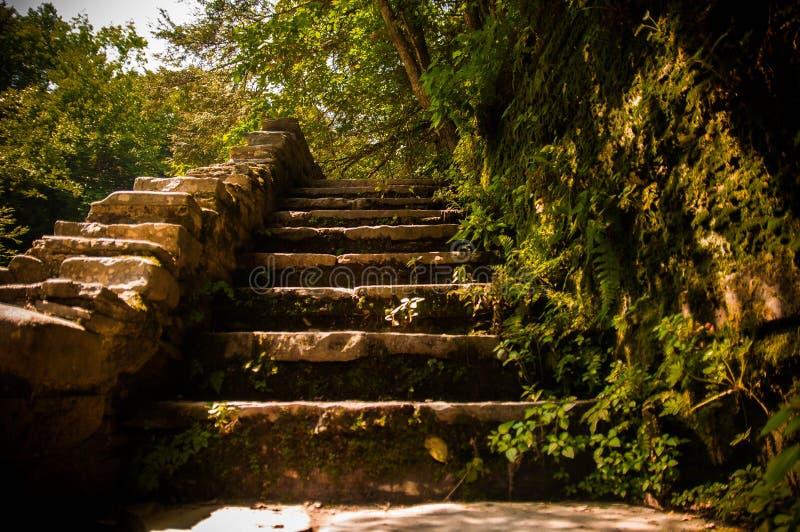 schody znajdujące się na zewnątrz zdjęcie royalty free