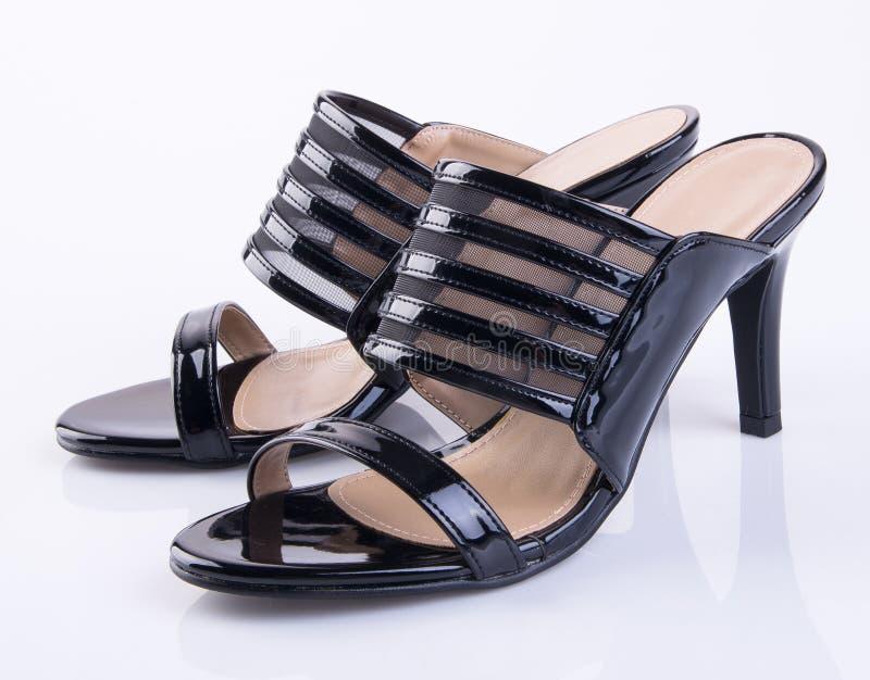 schoen of de zwarte schoenen van de kleurendame op een achtergrond stock fotografie