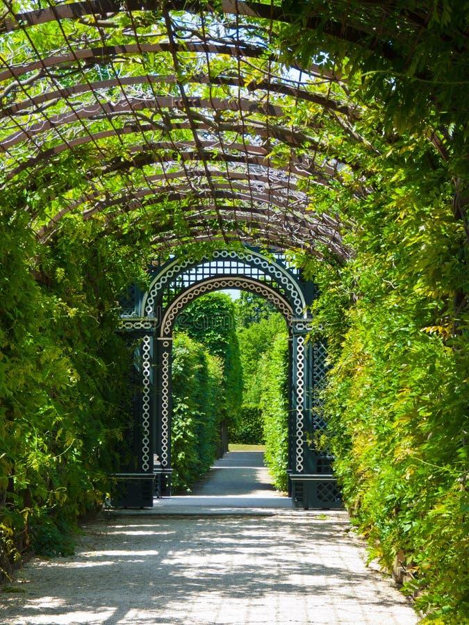 Schoenbrunn Garden royalty free stock photos