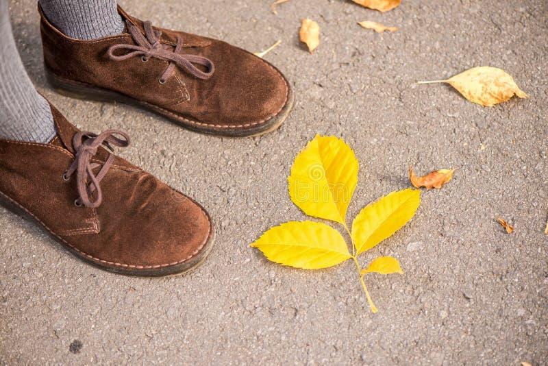 Schoenen en de herfstbladeren stock foto
